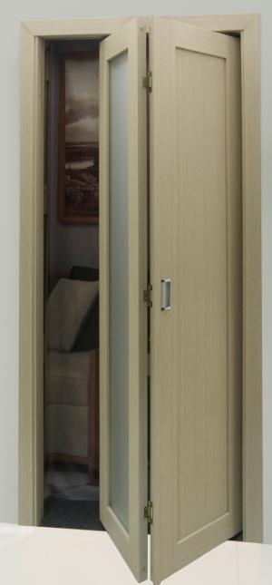 Дверь книжка 501