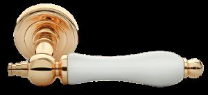 Дверная ручка MORELLI MH-42-CLASSIC PG/W Цвет - золото/белый