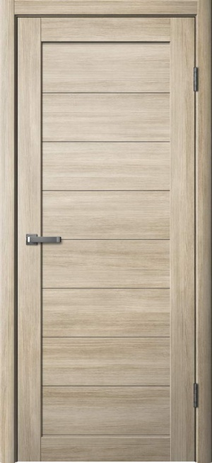 Дверь ЦДГ 01 глухая