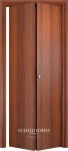 Дверь книжка ДПГ